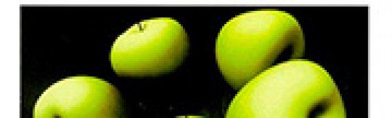 M. BORILLO, A. SAUVAGEOT (dir.) Les cinq sens de la création : art, technologie, sensorialité