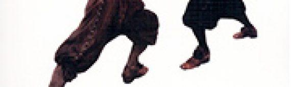PASCAL BRIOIST, HERVÉ DREVILLON, PIERRE SERNA Croiser le fer (réédition)