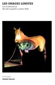 Images limites (Les) – Murielle Gagnebin et Julien Milly (dir.) 2008