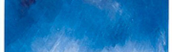 OLIVIER BARBARANT Les parquets du ciel